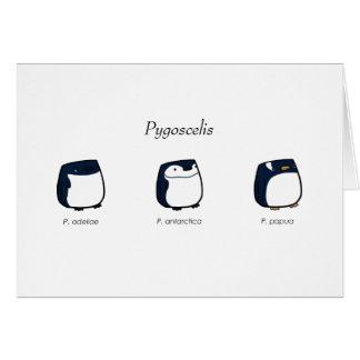 Pygoscelis Card