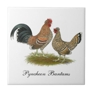 Pyncheon Bantams Small Square Tile