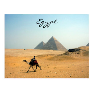 pyramid camel postcards