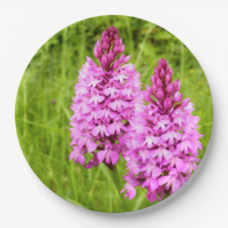 Pyramidal Orchid Paper Plates