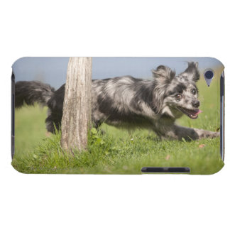 Pyrenean Shepherd goes round the pole iPod Touch Case