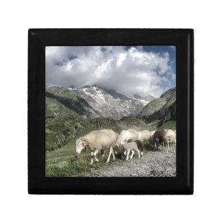 pyrenees landscape gift box