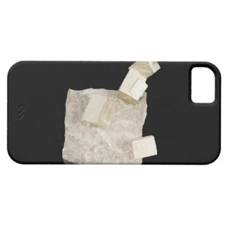 Pyrite Crystals in Shale iPhone 5 Cases