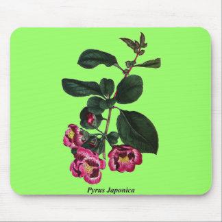 Pyrus Japonica Mouse Pad