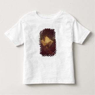 Pythagoras (6th century BC) (oil on canvas) Toddler T-Shirt