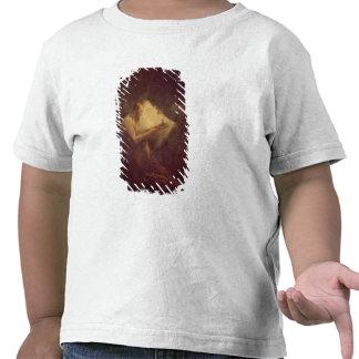 Pythagoras (6th century BC) (oil on canvas) Shirt
