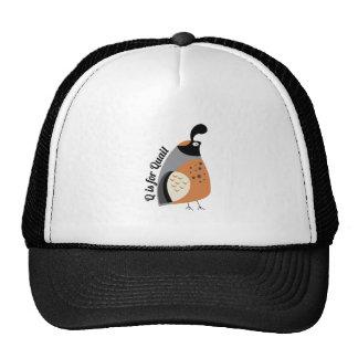 Q For Quail Mesh Hat