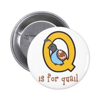 Q Is For Quail 6 Cm Round Badge