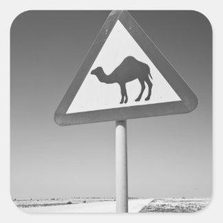 Qatar, Al Zubarah. Camel Crossing Sign-Road to Square Stickers