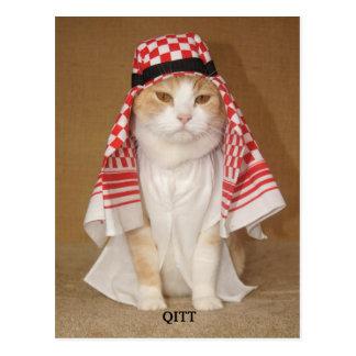 QITT/ CAT POSTCARD