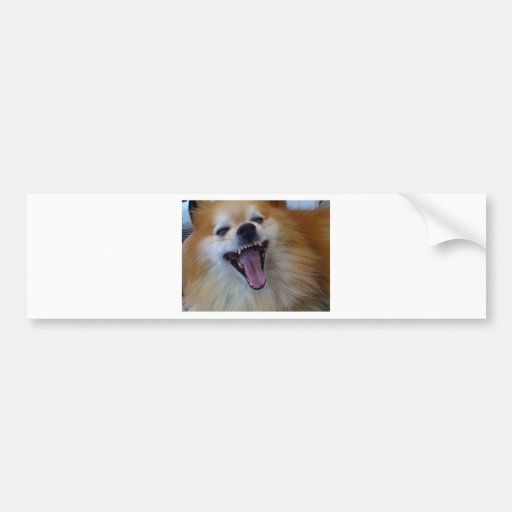 qpc user template, def at 30% -> JJJJJJJJJ Bumper Sticker