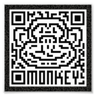 QR Code the Monkey Photograph
