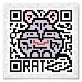 QR Code the Rat Photograph