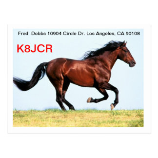 QSL Card w Galloping Horse Postcards