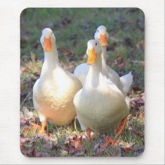 Quack attack mouse mat