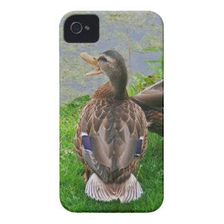 Quacking Duck iPhone 4 Case-Mate Cases