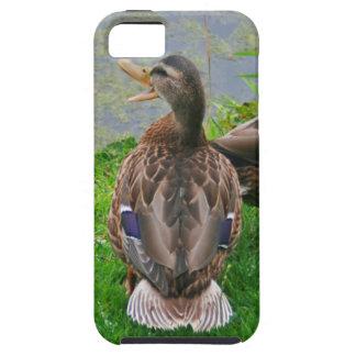 Quacking Duck iPhone 5 Case