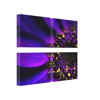 Quad Panel Flora Canvases Canvas Print