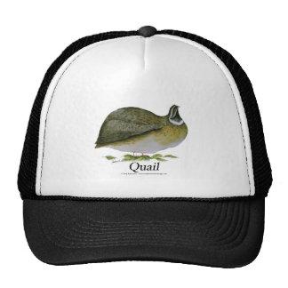 quail bird, tony fernandes cap