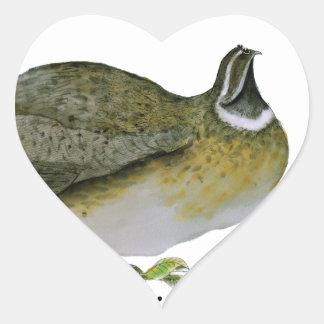 quail bird, tony fernandes stickers
