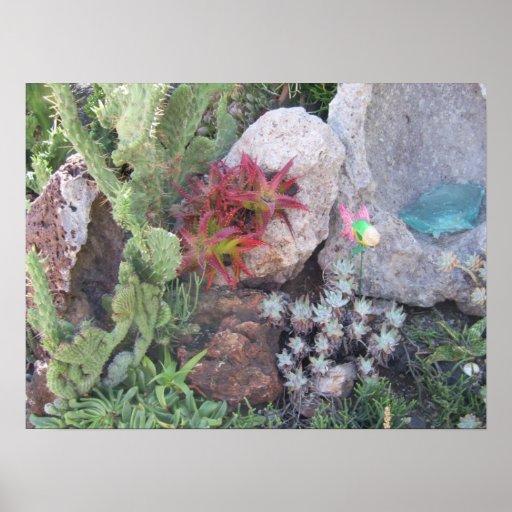 Quail Botanical Gardens 1 Poster