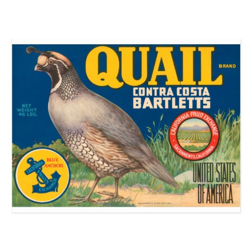 Quail Brand Contra Costa Bartletts Post Cards