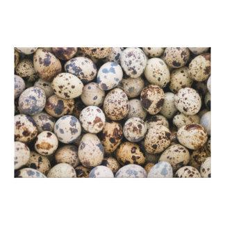 Quail Eggs, Huaraz, Cordillera Blanca, Ancash Canvas Print