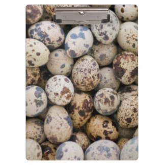 Quail Eggs, Huaraz, Cordillera Blanca, Ancash Clipboard