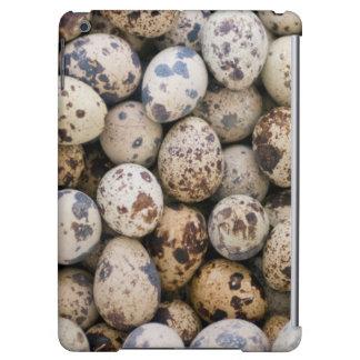 Quail Eggs, Huaraz, Cordillera Blanca, Ancash iPad Air Case