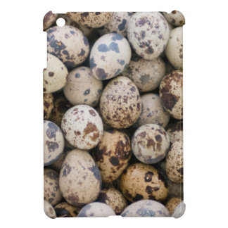 Quail Eggs, Huaraz, Cordillera Blanca, Ancash iPad Mini Cases