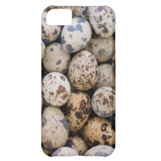 Quail Eggs, Huaraz, Cordillera Blanca, Ancash iPhone 5C Case