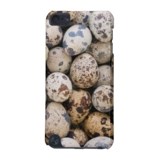 Quail Eggs, Huaraz, Cordillera Blanca, Ancash iPod Touch (5th Generation) Covers