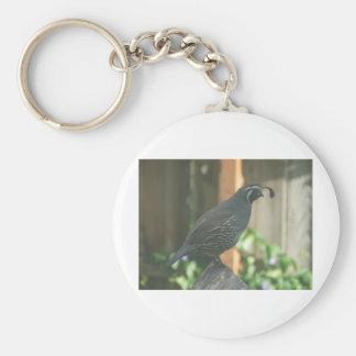 quail keychains