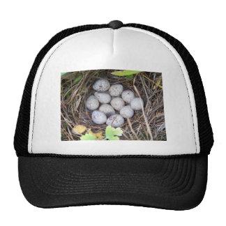 Quail Nest Mesh Hat