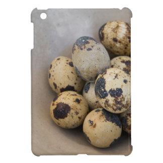 Quails eggs cover for the iPad mini