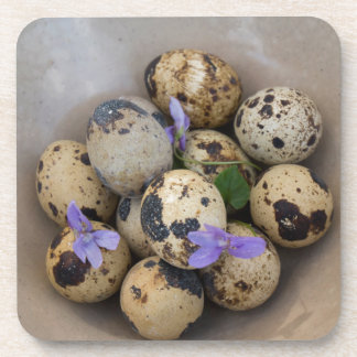 Quails eggs & flowers 7533 coasters