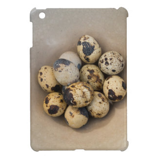 Quails eggs in a bowl case for the iPad mini