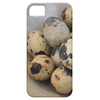Quails eggs iPhone 5 case