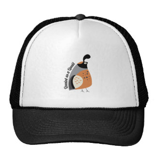 Quaint As Quail Hats