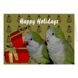 Quaker Parrot Parakeet Christmas Holiday Card