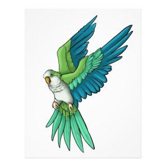 Quaker Parrot Products 21.5 Cm X 28 Cm Flyer