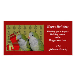 Quaker Parrots Animal Christmas Holiday Card Personalized Photo Card