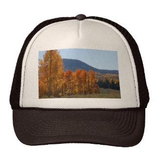 Quaking Aspen Trucker Hat