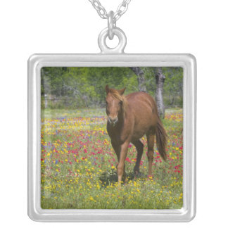 Quarter Horse in field of wildflowers near Square Pendant Necklace