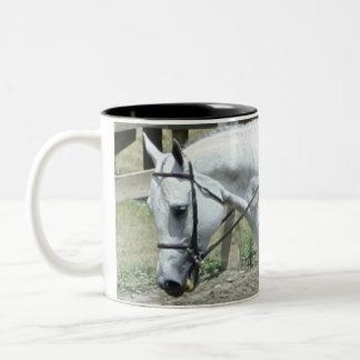 Quarter Horse Lover Mug