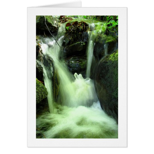 Quartz Crystal Cluster in Forest Stream Card