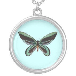 Queen Alexander Birdwing Butterfly Jewelry