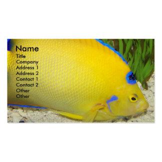 Queen Angelfish Nature Business Card