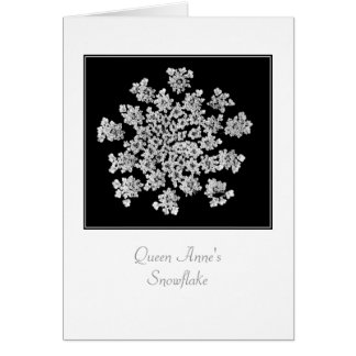 Queen Anne s Snowflake Blank Note Card