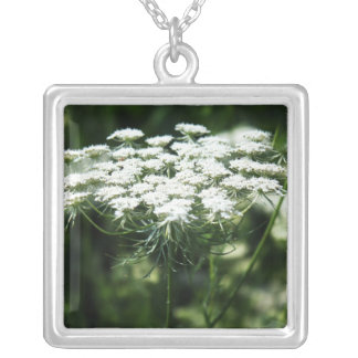 Queen Anne's Lace (Bishop's Lace) Jewelry